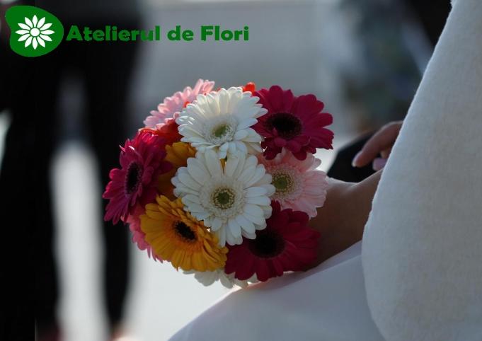 Buchete Simple Atelierul De Flori Timisoara