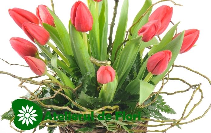 aranjament cu lalele 8 martie – Atelierul de flori Timisoara