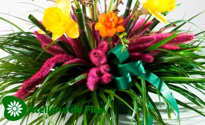 Frunza de palmier flori de primavara