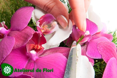 cum fac un buchet cu orhidee