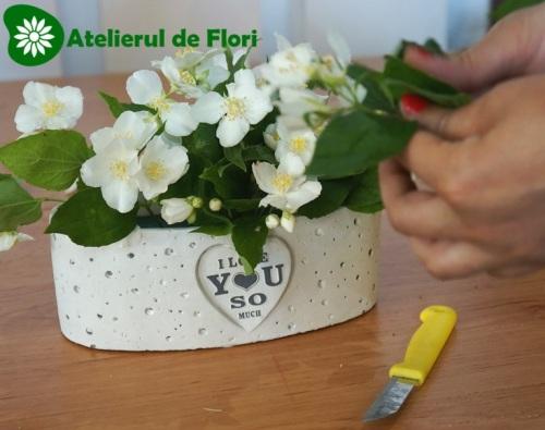 iasomie flori de mai