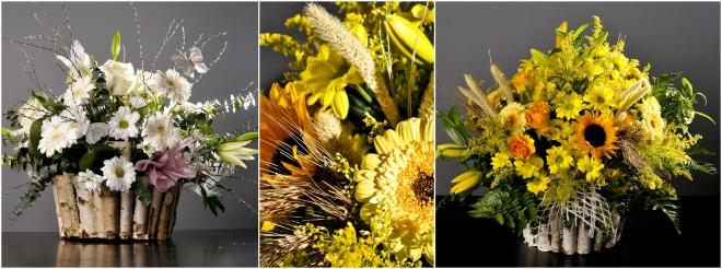 Cosuri de mesteacan flori mixte
