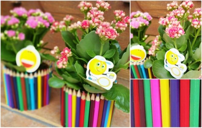 planta-kalanchoe-suport-creioane-colorate-800x510